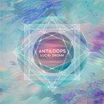 ANTILOOPS - luciddream